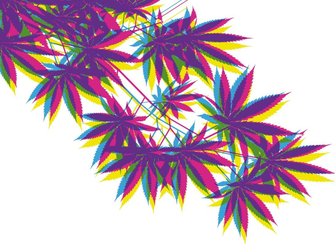 pic weed parentco
